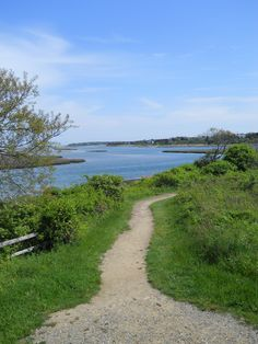 View from trail at Fort Hill area  - Cape Cod National Seashore - Eastham/Wellfleet, Cape Cod, MA