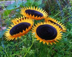 Sunflower Types, Types Of Sunflowers, Garden Hose, Outdoor, Image, Outdoors, Outdoor Games