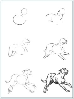 Math, Drawings, Animals, Animales, Animaux, Math Resources, Sketch, Early Math, Portrait