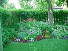 Perennial Shade Garden   ... Bagley, landscapes, color , zone 3, Perennial Paradise garden Center