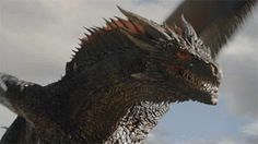 Trending GIF game of thrones hbo dragon emilia clarke daenerys targaryen khaleesi Drogon Game Of Thrones, Art Game Of Thrones, Game Of Thrones Dragons, Got Dragons, Game Of Thrones Quotes, Fantasy Creatures, Mythical Creatures, Night Creatures, Breathing Fire
