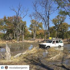 #Repost @nicolaibenjamin with @repostapp. ・・・ #holländerhängt #dutchmanintouble #crocodile #moremi #okavango #toyota #botswana
