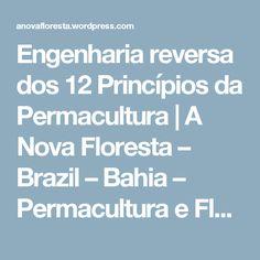 Engenharia reversa dos 12 Princípios da Permacultura | A Nova Floresta – Brazil – Bahia – Permacultura e Floresta de Alimentos