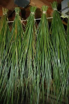 drying-sweet-grass