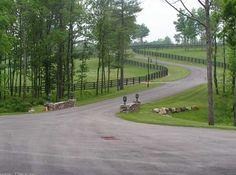pastures, black fencing
