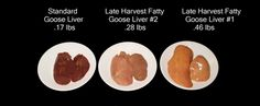 Late Harvest Fatty Goose Liver #2