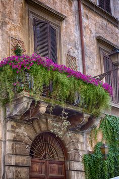 🌳🌳🌳 Dressing a balcony to compliment the architecture. Image from the lovely IG of. Garden Windows, Balcony Garden, Paris Balcony, Balcony Plants, Balcony Design, Garden Design, Balcony Window, Balcony Flowers, Window Boxes