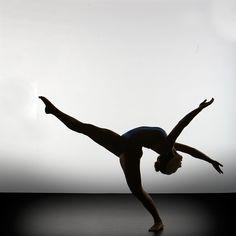 Silhouette & Sculptures - Photo by Richard Calmes - www.pbase.com/... Ballet, балет, Ballett, Ballerina, Балерина, Ballarina, Dancer, Dance, Danza, Danse, Dansa, Танцуйте, Dancing