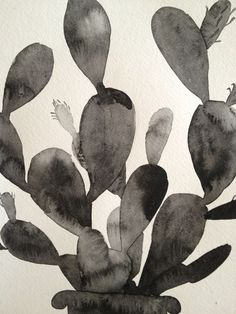 cactus watercolor. Anyone know the artist? xo.