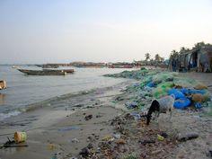 Le Sénégal veut en finir avec les sacs plastiques