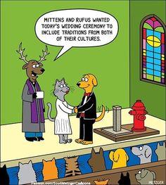 Cat Jokes, Cartoon Memes, Funny Animal Memes, Funny Animal Pictures, Funny Cartoons, Funny Comics, Funny Dogs, Funny Animals, Hilarious Sayings