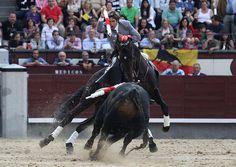 Pablo Hermoso de Mendoza Pamplona, Andalusia, Mendoza, Serial Killers, Equestrian, Badass, Horses, The Originals, Animals