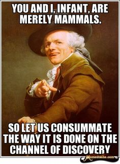Make funny memes with meme maker. (Top Funny Memes - generate and share your own! joseph-ducreux toni-pepperonis-cookin-up-flame-you-wanted-pizza-so-here-i-came Joseph Ducreux, Memes Humor, Dc Memes, Funny Memes, Humor Videos, Funny Irish Memes, Liar Humor, Funny Vegan Memes, Ford Memes