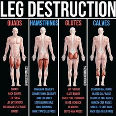 Build Bulging Bigger Legs Fast With This Workout On leg day, it seems to become a popular thing to make quads a priority because that [. Fitness Workouts, Gym Workout Tips, Butt Workout, Workout Videos, At Home Workouts, Fitness Tips, Leg Press Workout, Calf Muscle Workout, Fitness Memes