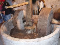 making olive oil old school in Croatia...the wheels are pulled by horse...