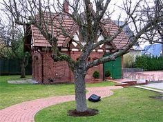 Der geschwungene Weg weicht einem Baum aus