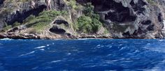 Baptème de plongée, Martinique. - http://cestquandquonvaou.fr/2016/02/01/bapteme-de-plongee-martinique/