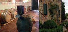 Il vino del sabato: Prove per un nuovo Rinascimento: il Cenerentola, l�Orcia Doc e Donatella Cinelli Colombini - Vino - World Wine Passion
