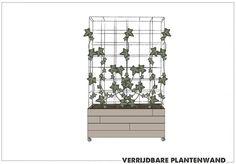 Afbeeldingsresultaat voor klimplant betongaas bak