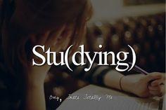 stu(dying)