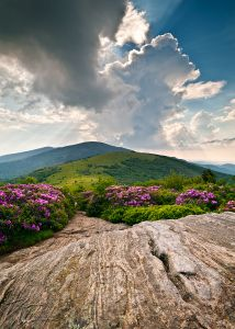 Roan Mountain Rays- Jane Bald Landscape by Dave Allen