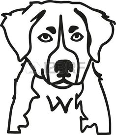 Bernese Mountain Dog Coloring Pages Dog coloring page