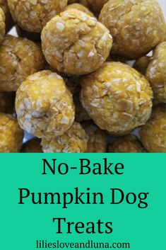 Easy Pumpkin Dog Treats - Easy no-bake pumpkin dog treat your dogs will love. Soft Dog Treats, Frozen Dog Treats, Puppy Treats, Diy Dog Treats, Homemade Dog Treats, Healthy Dog Treats, No Bake Dog Treats, Pumpkin Dog Treats Homemade, Pumpkin Recipes For Dogs