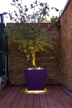 8 contemporary roof and garden designs year showcase 2013 : Wapping roof terrace Patio Lighting, Landscape Lighting, Lighting Design, Outdoor Planters, Garden Planters, Landscape Design, Garden Design, Modern Roofing, Light In