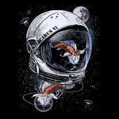 Fish in space astronaut helmet                                                                                                                                                                                 More