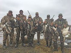 "GOOSE HUNTERS ARE doing better than duck hunters for guide James Stone of Elite Sportsmen Guide Service in the Sacramento Valley, after the rains. ""Joe and Luke Tollini and Brooks Stiltz and friends from all over California come to hunt with us every year and every year they keep killing geese,"" Stone said. ""We had light wind and high grey ceilings today but still managed to kill some birds in Sutter County."""