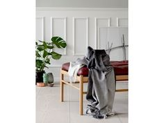 Modern Gray and White Plaid Luxury Soft Alpaca and Sheep Wool Throw Blanket White Plaid, Grey And White, Textile Company, Weaving Textiles, Square Patterns, Nordic Design, Sheep Wool, Blanket, Pillows