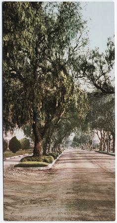 Marengo avenue, Pasadena,  CA