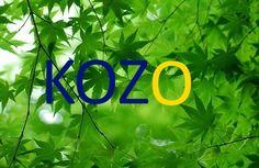 kozo http://kozo.shop-pro.jp/