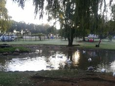 The farm in town Pretoria, Pta, Fun Things, Stuff To Do, Funny Things