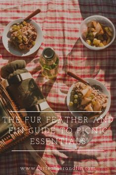 The Fur Feather & Fin Guide to Spring Picnic Essentials Picnic Essentials, Good China, Foldable Chairs, Romantic Picnics, Fire Bowls, Bank Holiday, Cloth Napkins, Cold Drinks, Paper Plates