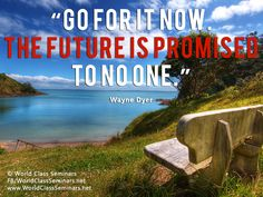 Go for it now. The future is promised to no one - Wayne Dyer