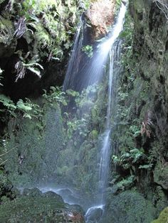 Secret falls campsite near Tulbagh. Camping Spots, Go Camping, Sight & Sound, Campsite, Cape Town, Waterfall, To Go, Cookies, Outdoor