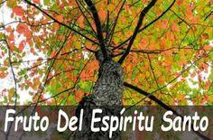 Temas Bíblicos - SiendoLuz.com Life Quotes, Plants, Christian Living, Spirituality, Pretty Quotes, Fruit Of The Spirit, Greek Words, 1 Corinthians 13, Holding Grudges