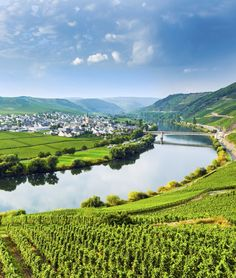 Popular destinations for river cruises in Europe include the breathtaking scenery which can be observed from luxury barges along the Rhine and Danube rivers Mosel Germany, New York Times, Europe Holidays, Hotels, Wine Guide, By Train, Wine Country, Where To Go, Places To See
