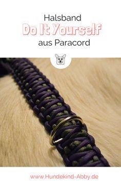 Wir zeigen euch, wie ihr ganz einfach ein Halsband aus Paracord für euren Hund machen könnt.