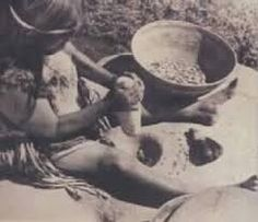 pounding and grinding shelled, and skinned acorns