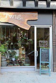Gallery | Twig Terrariums