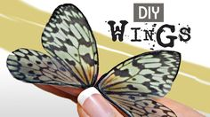 DIY - How to Make Beautiful Fairy Wings, the Easy way!