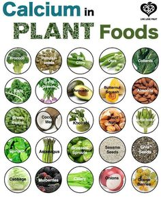CALCIUM in plant based foods.