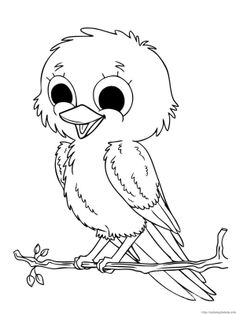 Pictures Baby Sparrow Birds Coloring Pages   Bird Coloring Pages :  KidsDrawing U2013 Free Coloring Pages Online