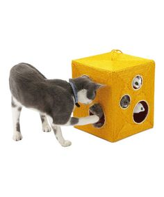This Gruyère Cat Scratching Play Cube by BOBBY is perfect! #zulilyfinds