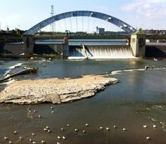 The Genesee River in downtown Rochester, NY looking south toward the  Frederick Douglass–Susan B. Anthony Memorial Bridge.