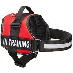 Service Dog In Training Vest With Reflective Strap & Removable Patches | Heavy Duty Nylon Straps and Handle | 7 Sizes, 5 Colors From Industrial Puppy ~~~ You can see this great product. (This is an affiliate link and I receive a commission for the sales)