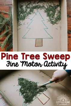 Pine Needle Sweep Fine Motor Activity (from Tara, Little Pine Learners)