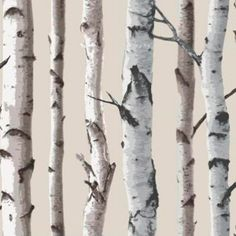Nordik wood wallpaper by Wallpaperdirect | Woodland design ideas | Design | Trend | Housetohome.co.uk